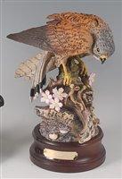 Lot 21-A Royal Douton kestrel (Falco Tinnunculus), DA144,...