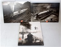 Lot 25-Three various black & white pictures on hardboard ...