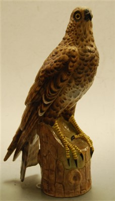 Lot 1-A circa 1900 continental porcelain bird of prey,...