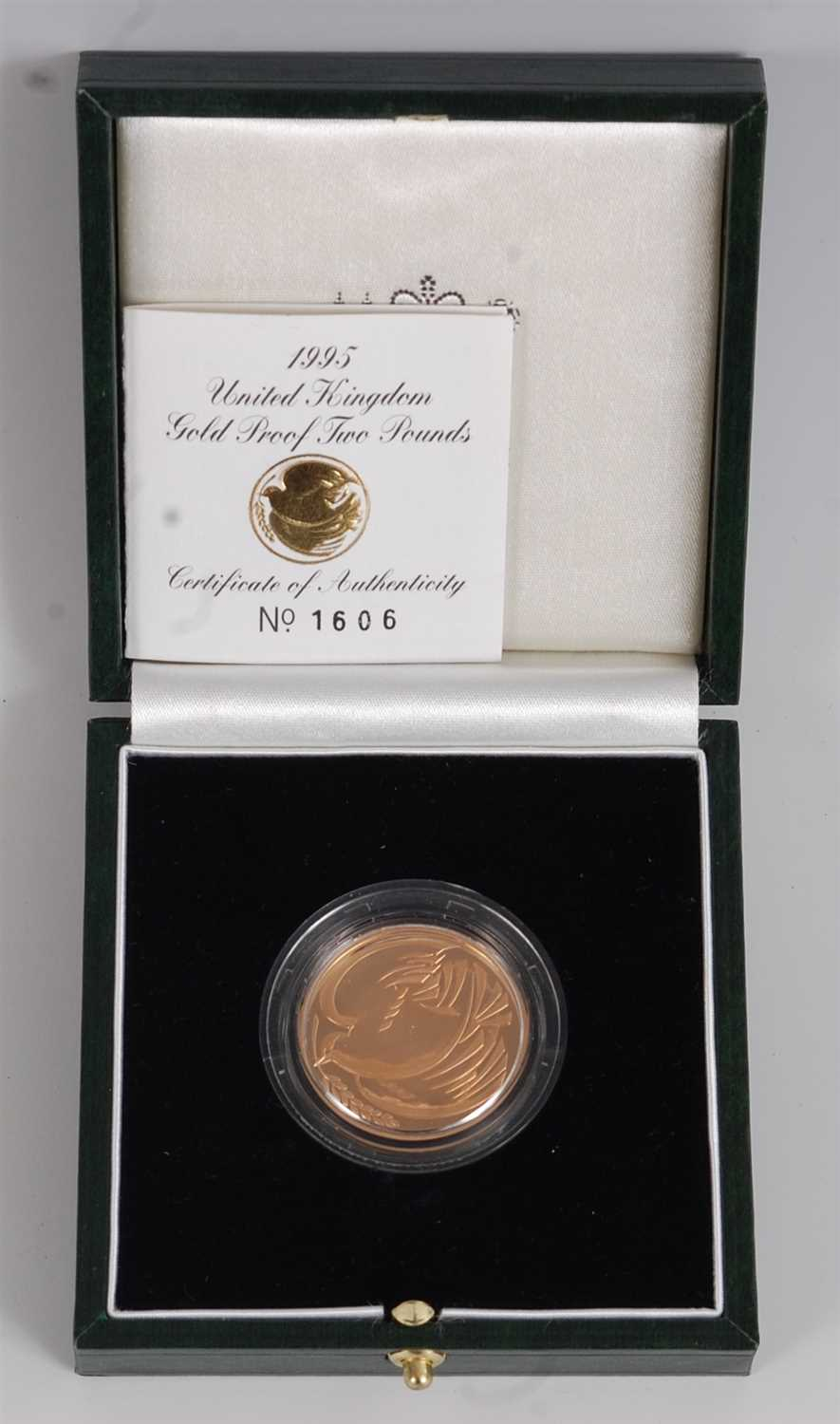 Lot 2045-Great Britain, a cased 1995 gold proof two-pound...