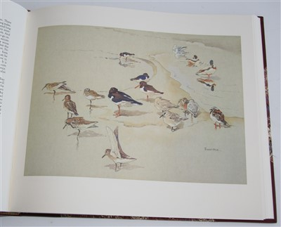 Lot 1009-Ennion, Eric, Birds and Seasons. Arlequin Press,...