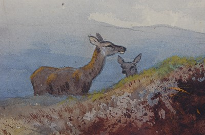 Lot 482 - Archibald Thorburn (1860-1935), Stag within a...