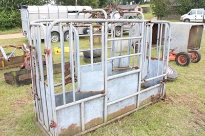 Lot 12 - 1 Galvanised Cattle Crush