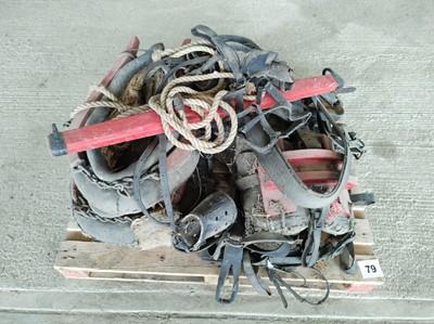 Lot 79 - Sundry Horse Equipment (harnesses, whipples)